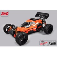 Buggy WB535 2WD
